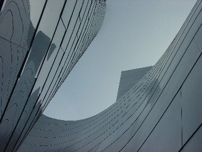 Bisected Curve