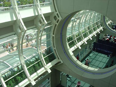 1683 Convention Center Windows